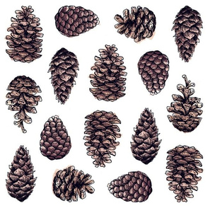 Pinecones Wrapping Paper