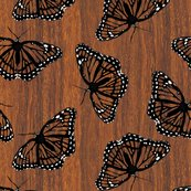 Rrrviceroy_butterflies_camouflaged_on_teak_shop_thumb