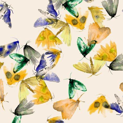 Raqua_moth_shop_preview