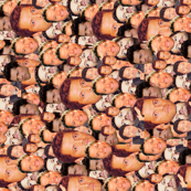 Mishapocalypse Gone Sideways
