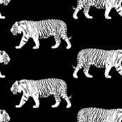 Rrrwhite_walking_tiger_shop_thumb