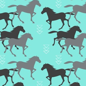 wild_horses_turqs