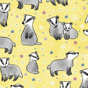 Meadow Badgers