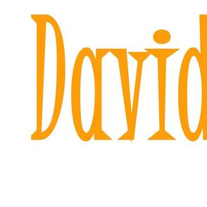 david_name_1