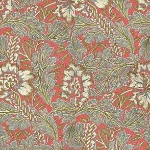 Anemone Morris Rose