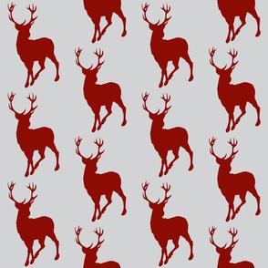 Buck- grey/scarlet