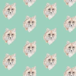 Fox on Seafoam