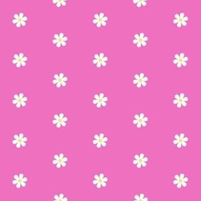 Daisy Dots - pink