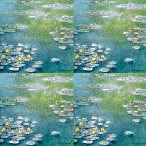 Waterlilies in Pond