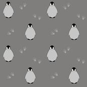 Penguins on gray