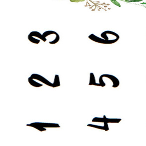 Floral Succulent Milestone