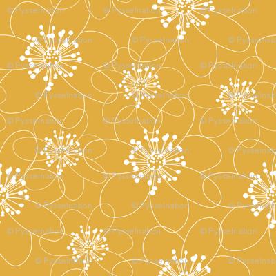 anemone ocra
