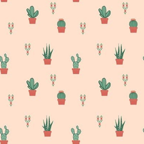 Scattered Succulents