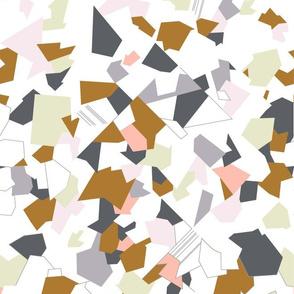 Geometric field