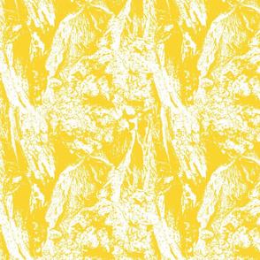 Sunshine | Yellow