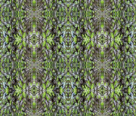 Citrus Leaves fabric by katdermane on Spoonflower - custom fabric