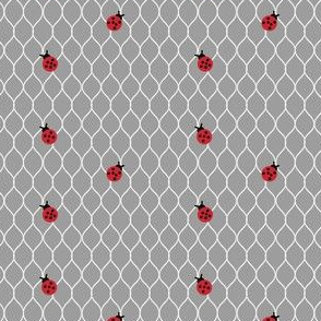 Don't miss the point (small ladybug on chicken wire lighter grey)