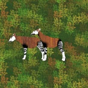 Teak Okapi in the brush