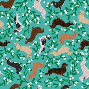 dachshund mistletoe fabric cute doxies dogs longhaired doxies