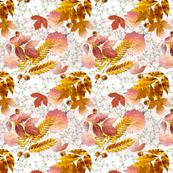 Fall Leaves & Chrysantemums