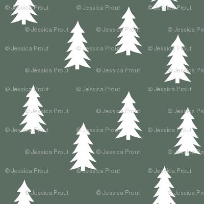 trees on terrain green || adventure camp