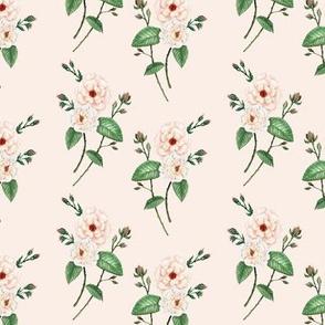 Vintage Rose Ivory & Peach