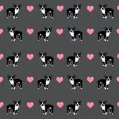 grey boston terrier love hearts fabric cute dog fabric