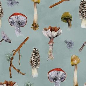 Mushroom Party