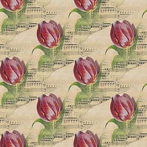 musical tulip