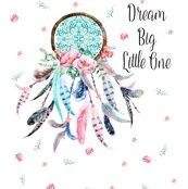 Rrr42_x72__dream_big_aqua___pink_quote_shop_thumb