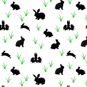 black rabbits with green grass