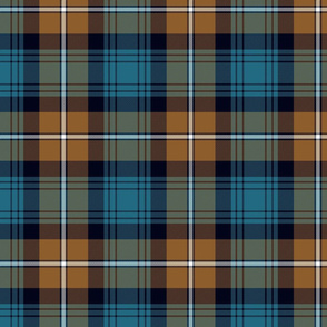 Liverpool regimental tartan simple - 7""