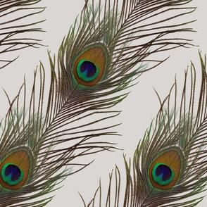 Silver Peacock Stripe-ed