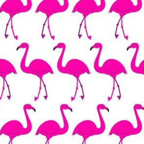Flamingo Row