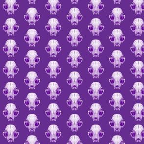 cat skull purple