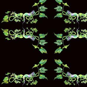 Dragon and English Ivy Design
