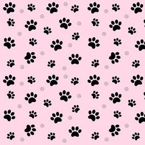 Paw prints Schnauzer Dogs