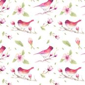 magnolia_bird