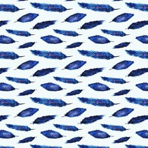 Space feathers on blue background