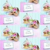 Rmacarons_signed_shop_thumb