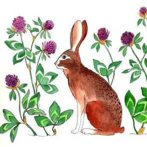 Rabbit_and_Clover