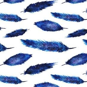 Starry night feathers