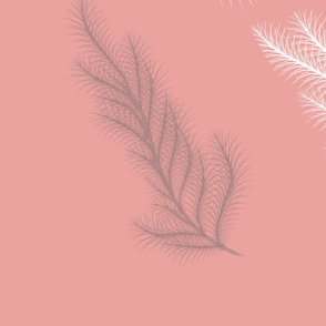 Pink_Feather