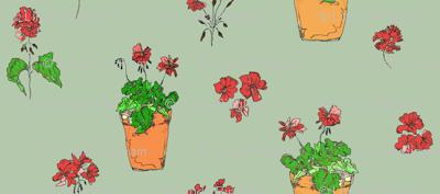 geranium_green