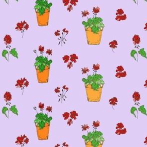 geranium_lilac