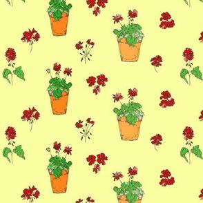 geranium_yellow