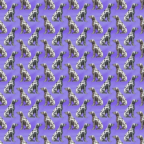 Sitting Dalmatians - small purple