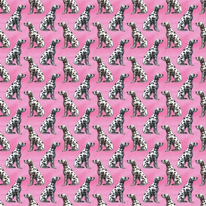 Sitting Dalmatians - small pink