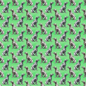Sitting Dalmatians - small green