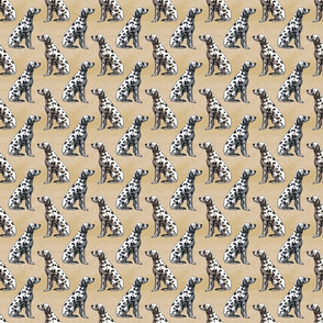 Sitting Dalmatians - small tan